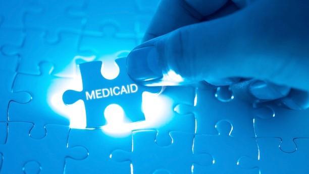 medicaid puzzle